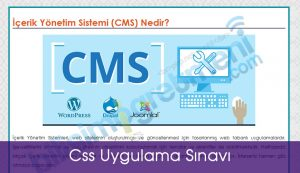 css_uygulama_sinavi