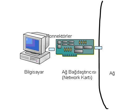 rp_network4-1.JPG