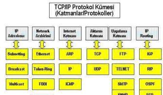 rp_network7-1.JPG
