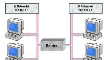 rp_network9-1.JPG