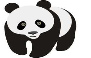 panda 300x190 Grafik Animasyon 1.Dönem 1.Uygulama Sınav Soru ve Cevapları yazili sorulari grafik ve animasyon fireworks