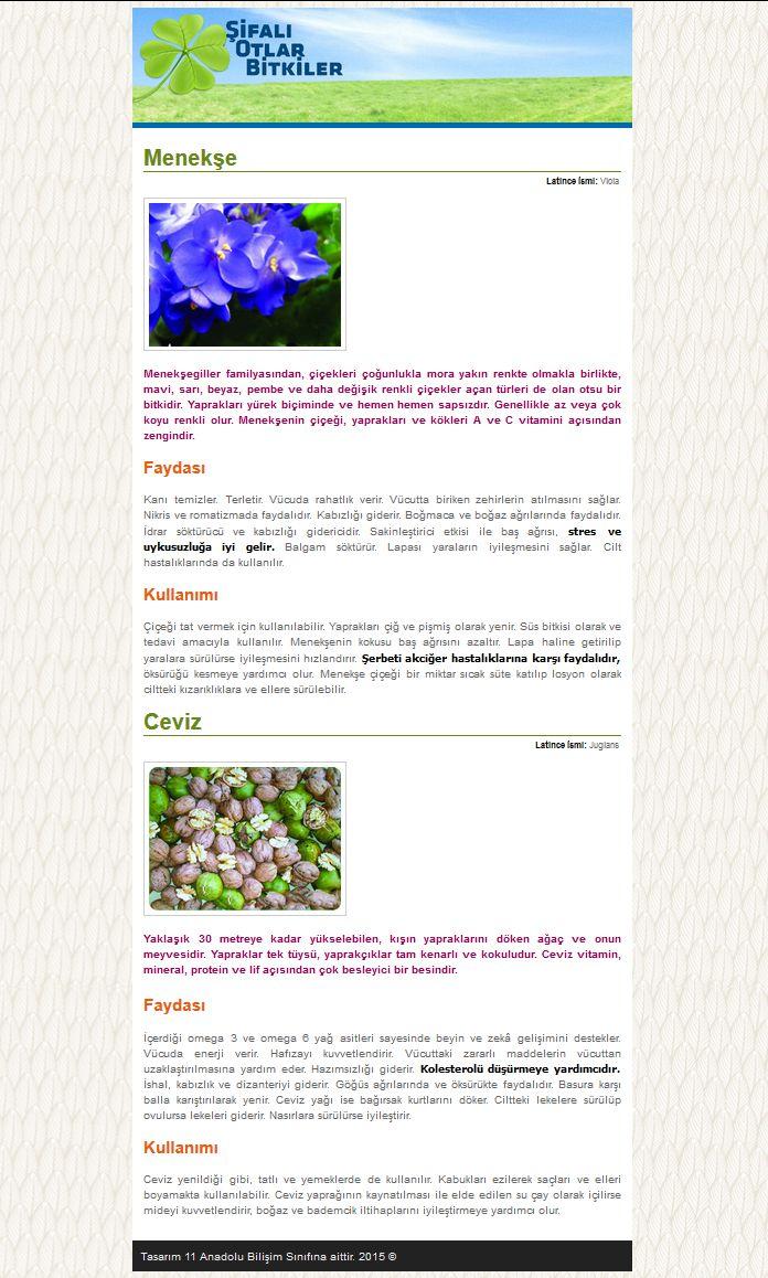Css Dersleri – Web Sayfası Uygulama Örneği (Şifalı Bitkiler)